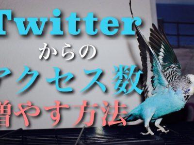 Twitterからのアクセス数を増やす5つの方法